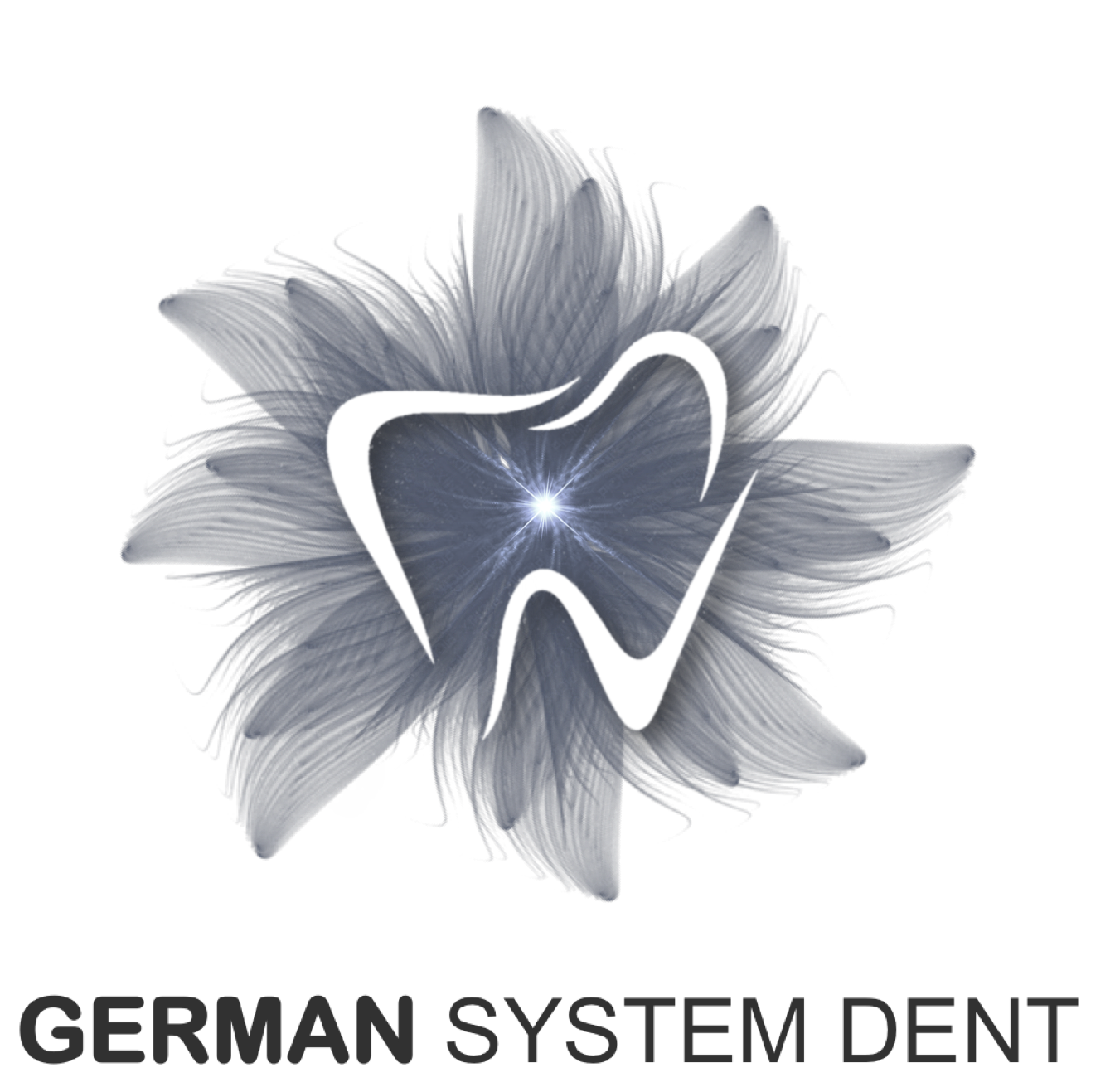 cropped-german-system-dent-logo-gsd.png