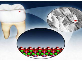 hidroxiapatita in smalt dentar