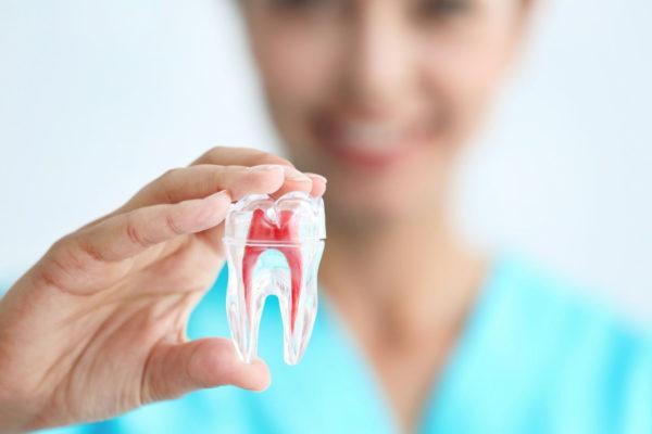 stomatologie aplicata - terapia dentara